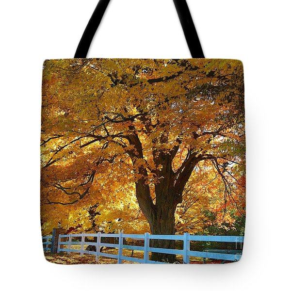 Golden Curtain Tote Bag