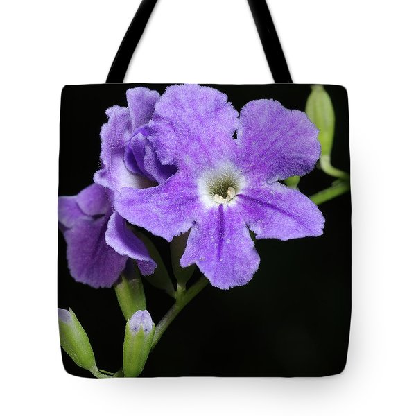 Tote Bag featuring the photograph Golden Dewdrop II by Richard Rizzo
