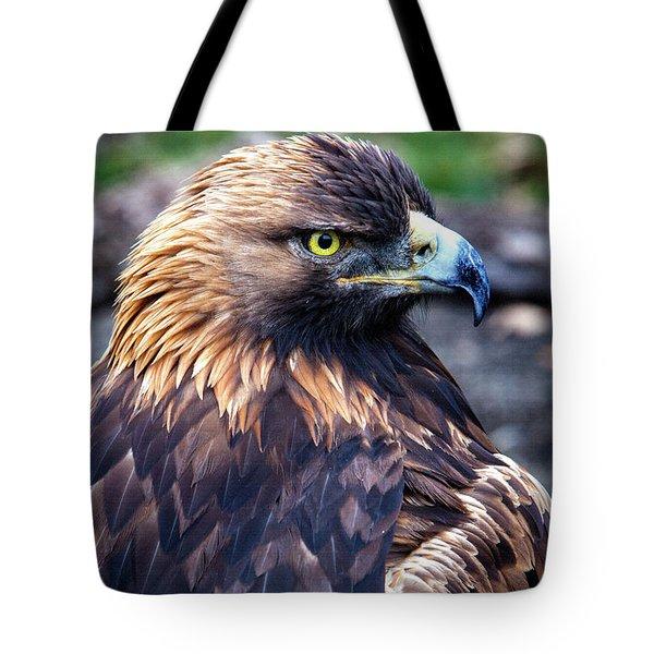 Golden Eagle 001 Tote Bag by David Millenheft