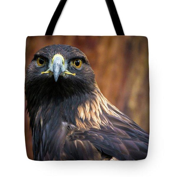 Golden Eagle 1 Tote Bag