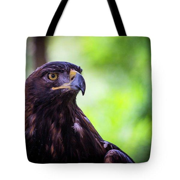Golden Eagle 2 Tote Bag