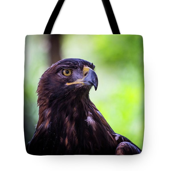 Tote Bag featuring the photograph Golden Eagle 2 by T A Davies