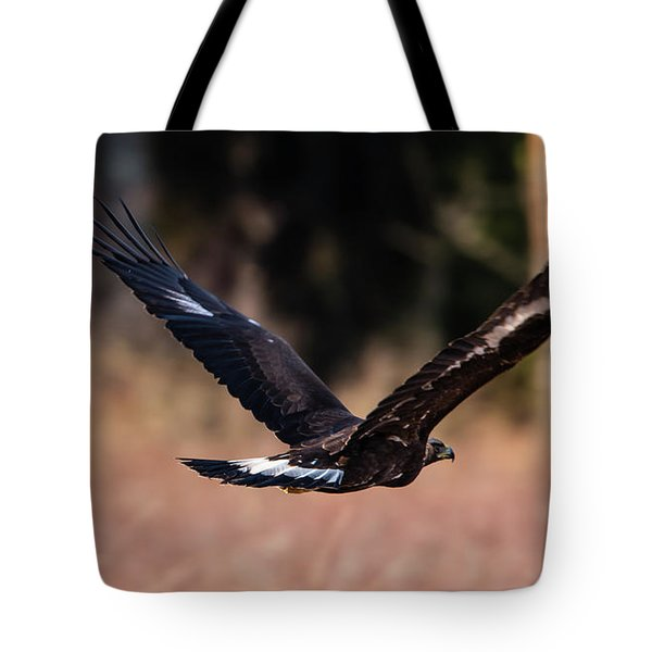 Tote Bag featuring the photograph Golden Eagle Flying by Torbjorn Swenelius