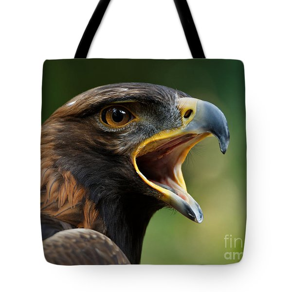 Golden Eagle - Raptor Calling Tote Bag