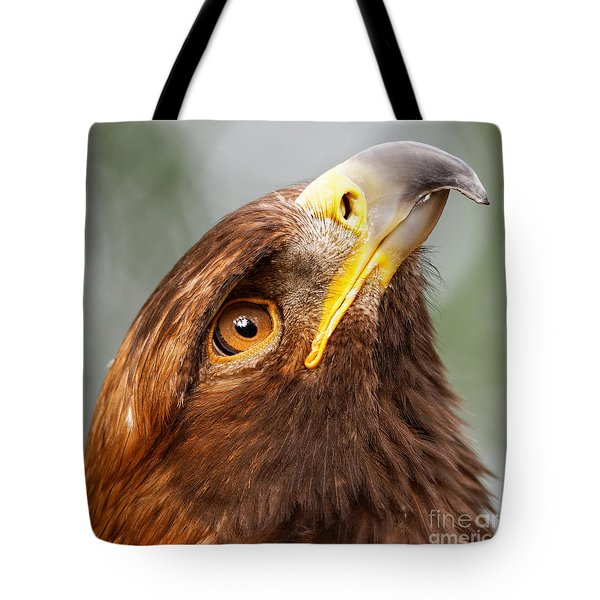 Golden Eagle - Sky Gazer Tote Bag
