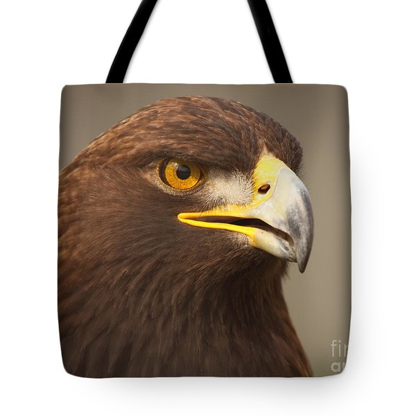 Tote Bag featuring the photograph Golden Eagle Softly Calling by Max Allen