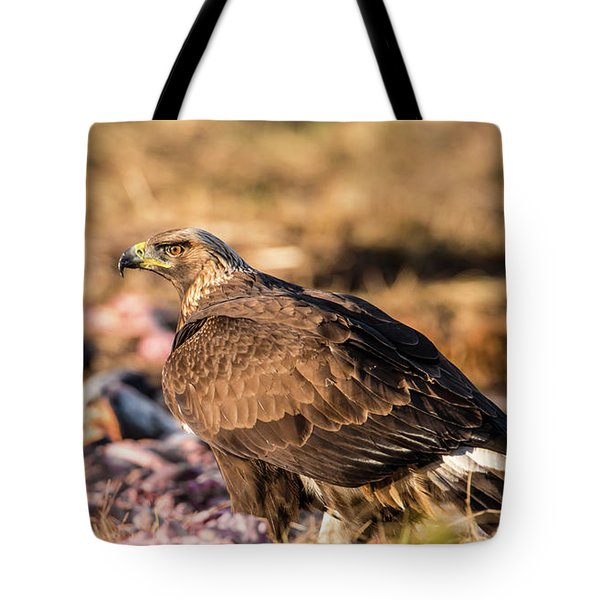 Tote Bag featuring the photograph Golden Eagle's Back by Torbjorn Swenelius