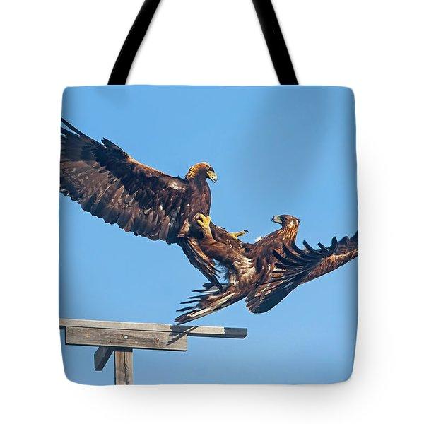 Golden Eagle Courtship Tote Bag
