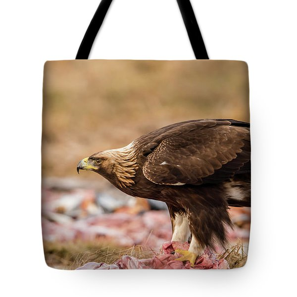Tote Bag featuring the photograph Golden Eagle's Profile by Torbjorn Swenelius