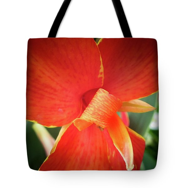 Golden Edge Tote Bag