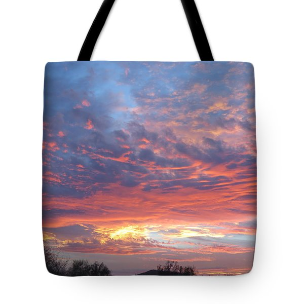 Golden Eye Landing In The Desert Tote Bag