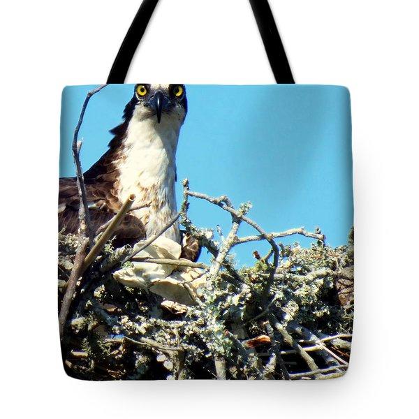 Golden Eyes Tote Bag by Karen Wiles