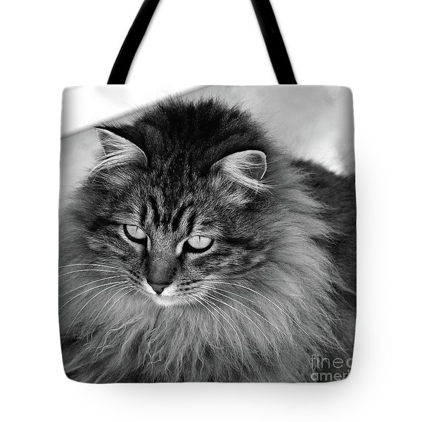 Golden Eyes Two Tote Bag
