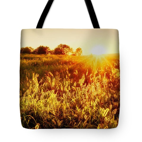 Tote Bag featuring the photograph Golden Fields by Mark Miller