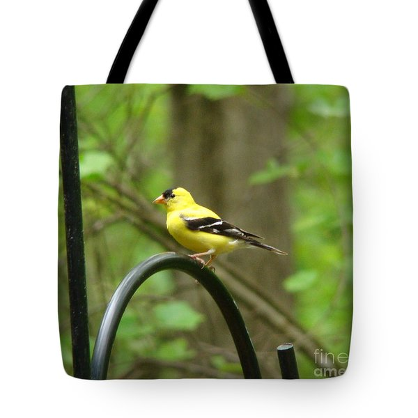 Golden Finch Tote Bag by Rand Herron