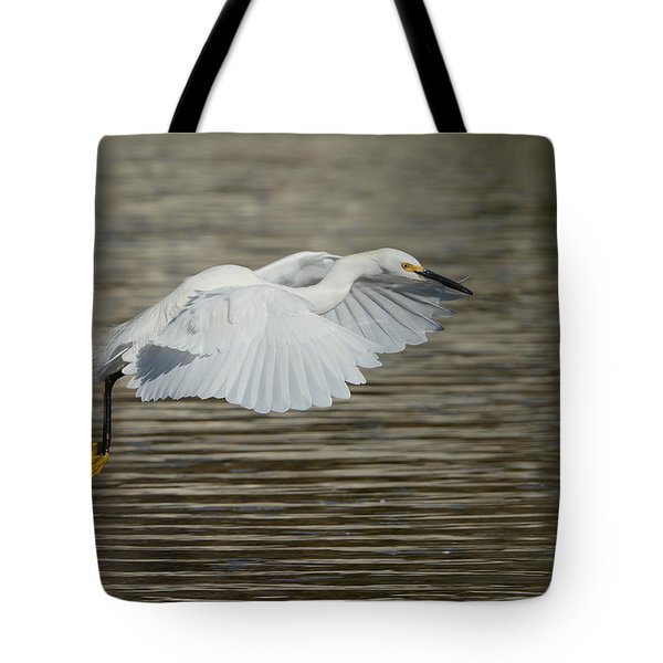 Tote Bag featuring the photograph Golden Flight by Fraida Gutovich