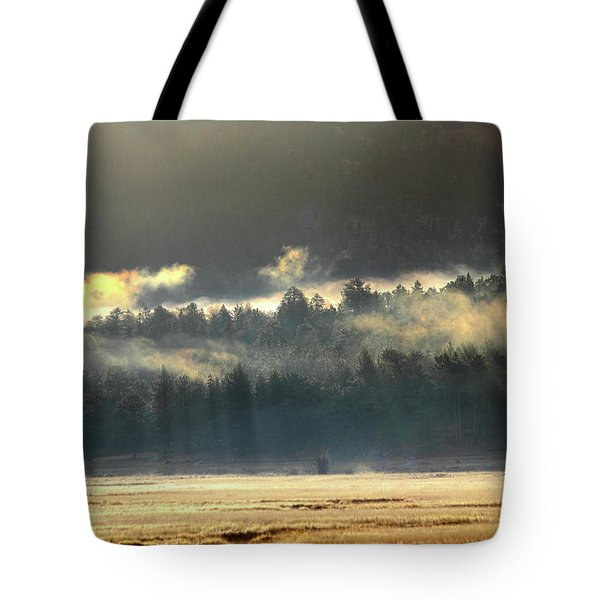 Tote Bag featuring the photograph Golden Fog by Shane Bechler