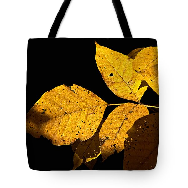 Golden Glow Tote Bag by Christopher Holmes