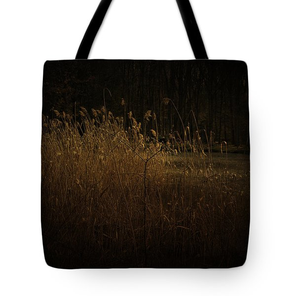 Tote Bag featuring the photograph Golden Grass by Ryan Photography