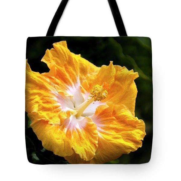 Golden Hibiscus - Hawaii Tote Bag