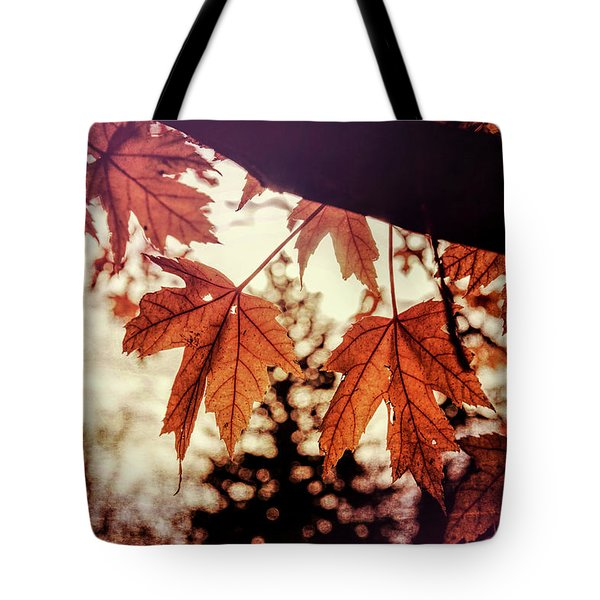 Golden Hour Tote Bag by Annette Berglund