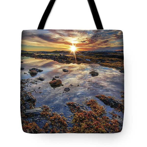 Golden Hour At Pott's Point Tote Bag