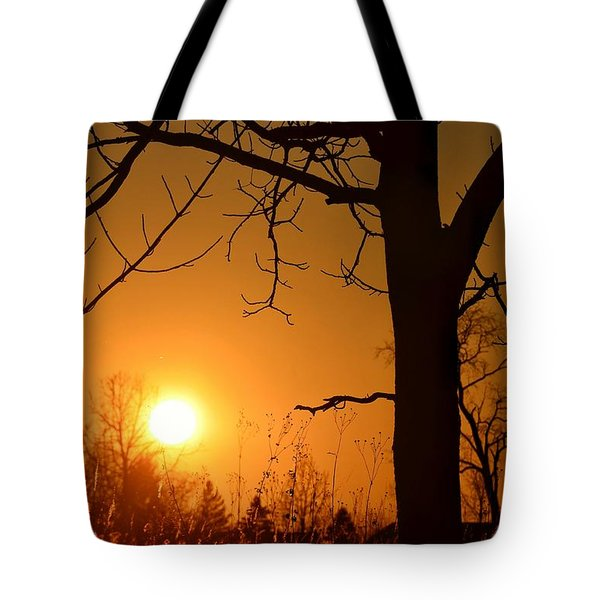 Golden Hour Daydreams Tote Bag