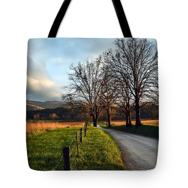 Golden Hour In The Cove Tote Bag