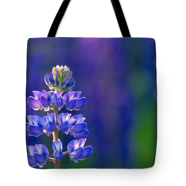 Golden Hour Lupine Tote Bag