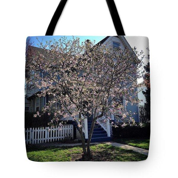 Golden Hour Magnolia   Tote Bag
