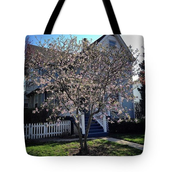 Golden Hour Magnolia   Tote Bag