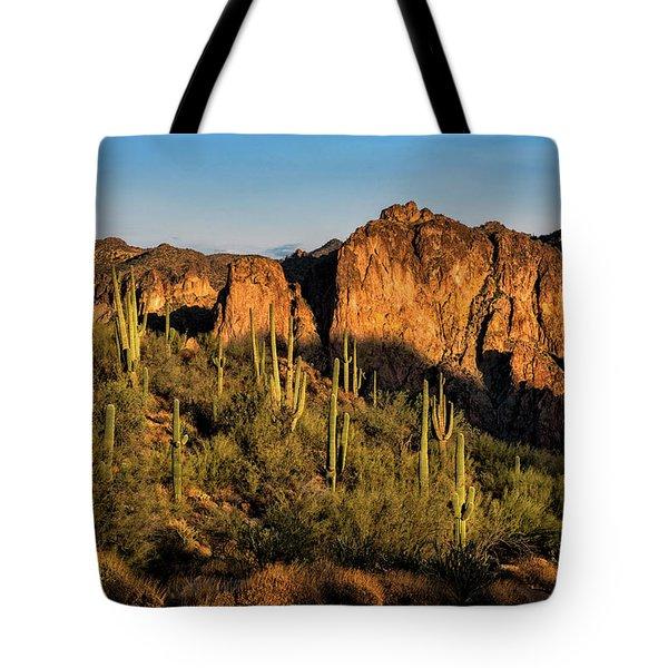 Tote Bag featuring the photograph Golden Hour On Saguaro Hill  by Saija Lehtonen