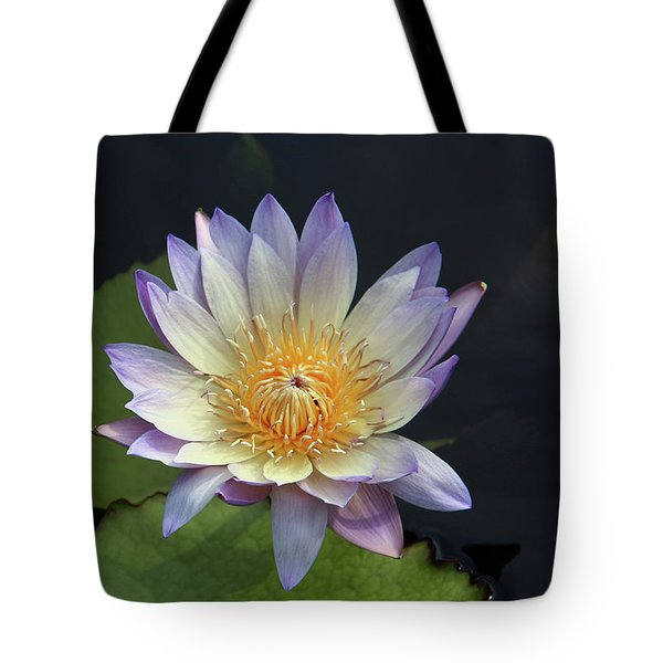 Golden Hue Tote Bag