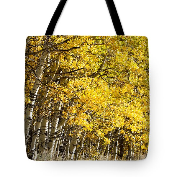 Golden II Tote Bag