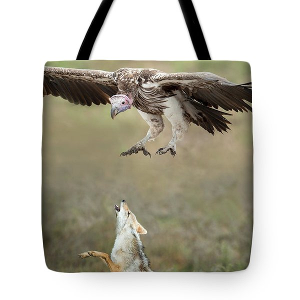 Golden Jackal, Canis Aureus, Leaping At Vulture Tote Bag