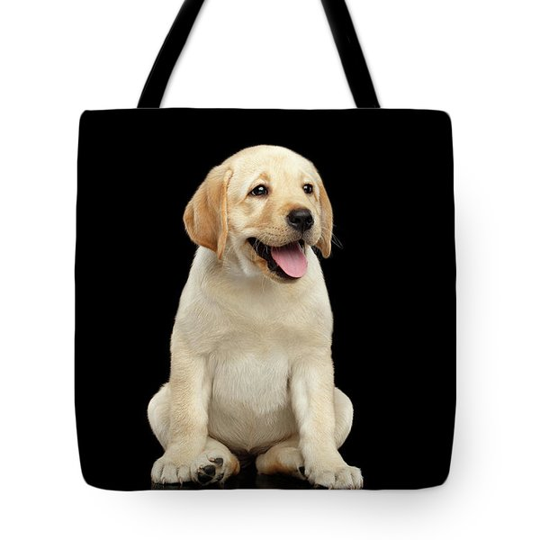 Golden Labrador Retriever Puppy Isolated On Black Background Tote Bag