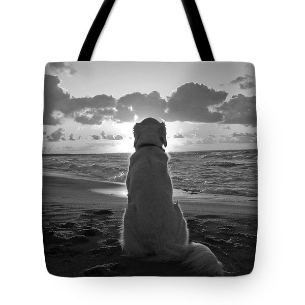 Golden Labrador Watching Sunset Tote Bag