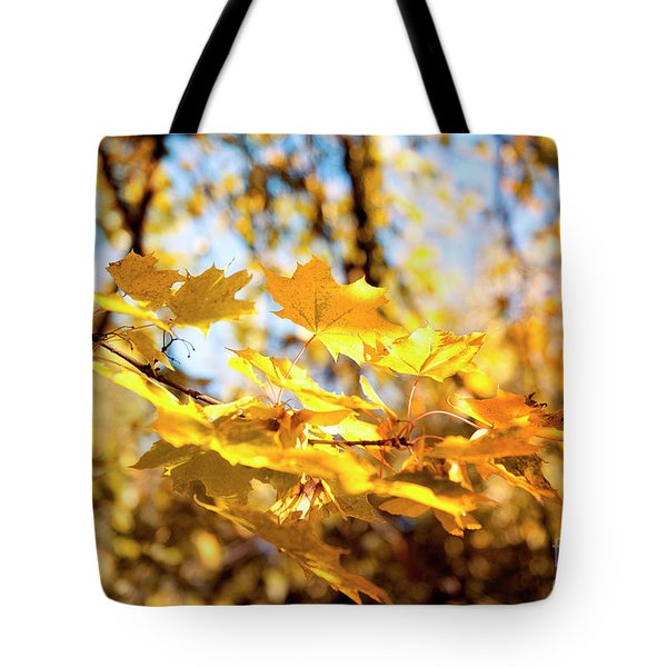 Tote Bag featuring the photograph Golden Leaves by Ivy Ho