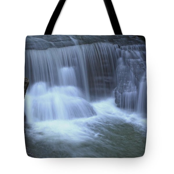 Golden Ledge Tote Bag