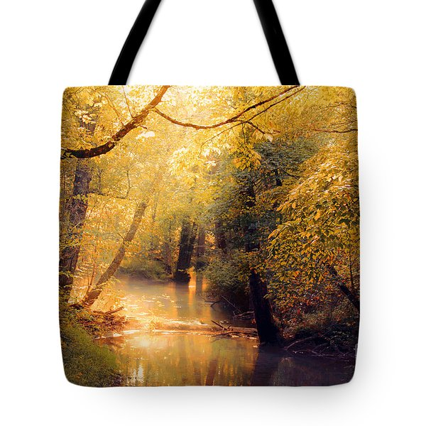 Tote Bag featuring the photograph Golden Light by Geraldine DeBoer