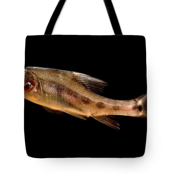 Golden Line Barbel Tote Bag
