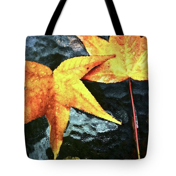 Golden Liquidambar Leaves Tote Bag