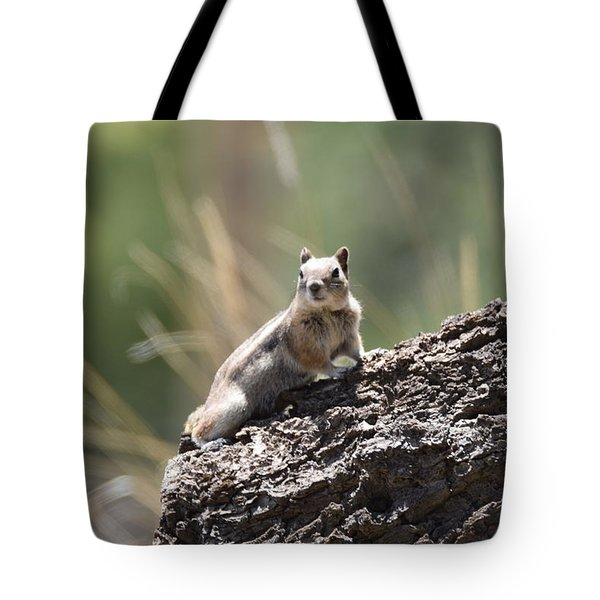 Tote Bag featuring the photograph Golden Mantled Ground Squirrel by Margarethe Binkley