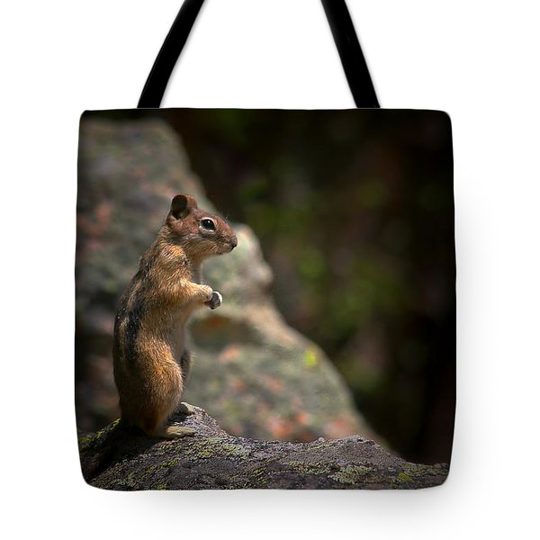 Golden Mantled Ground Squirrel Rocky Mountains Colorado Tote Bag by Christine Till