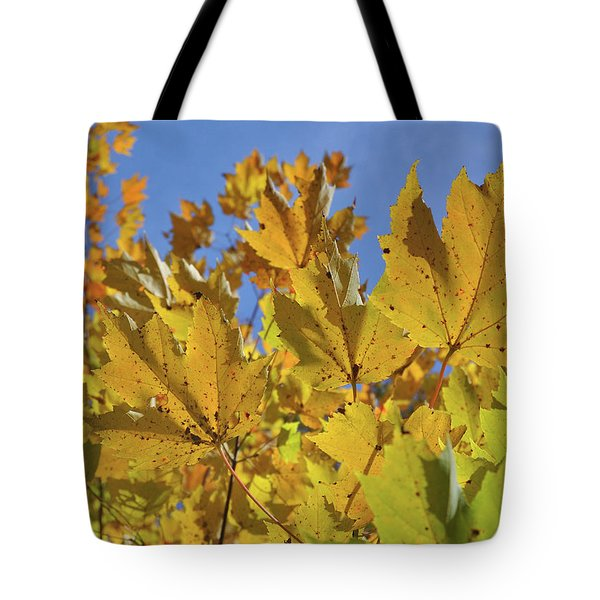 Golden Maple Tote Bag