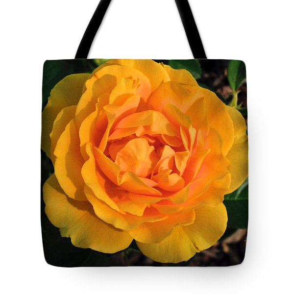 Golden Memories Tote Bag by Sandy Molinaro