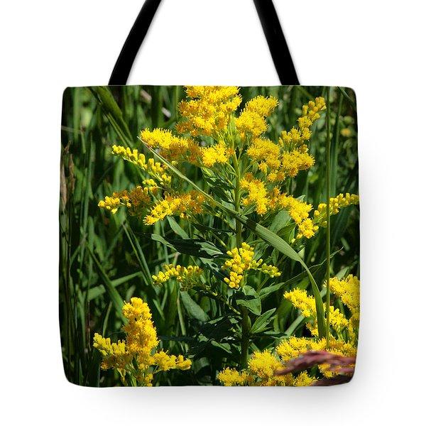 Golden October Tote Bag by Christine Till