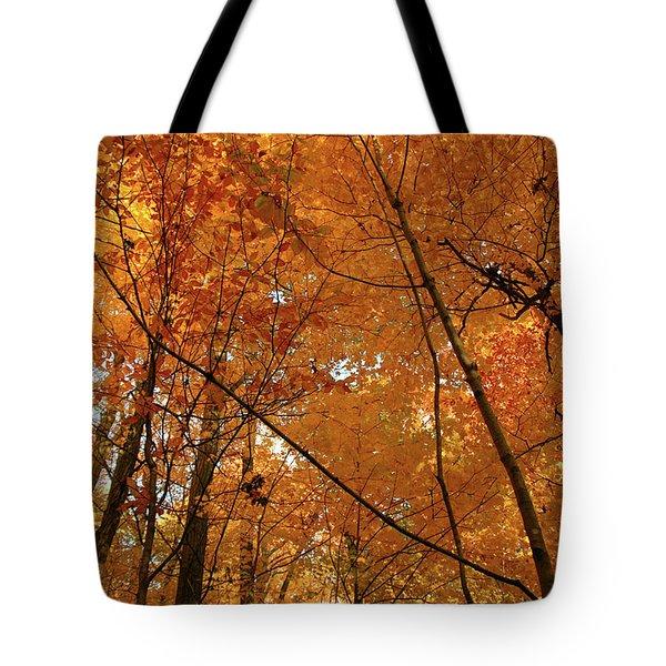 Golden October Forest Tote Bag