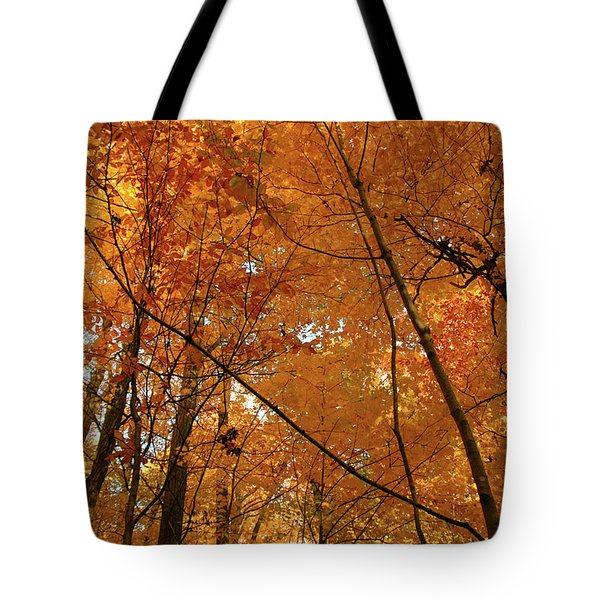 Golden October Forest Tote Bag