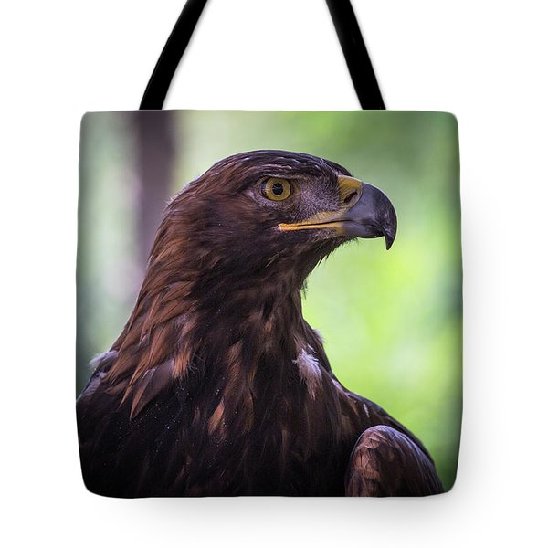 Tote Bag featuring the photograph Golden One by T A Davies